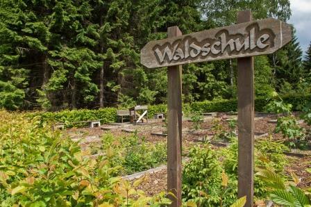 Walderlebnispfad Eichhörnchenweg in Neuenrade