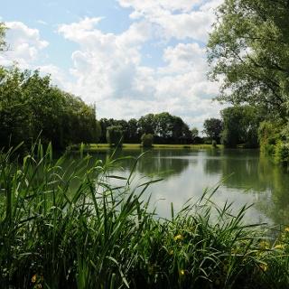Schützensee in Reichelsheim