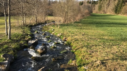 Fischtreppe Stausee