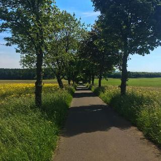 Radweg Höhn zur Fuchskaute