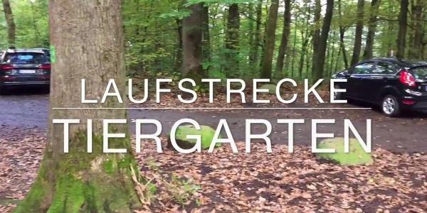Laufstrecke Tiergarten in Siegen-Weidenau