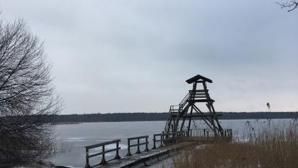 Slokas ezera putnu tornis