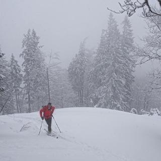 Nebel und Schnee im Aufstieg, obwohl aufgelockertes Wetter gemeldet war...