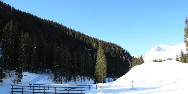 Davos-Weltcuploipe