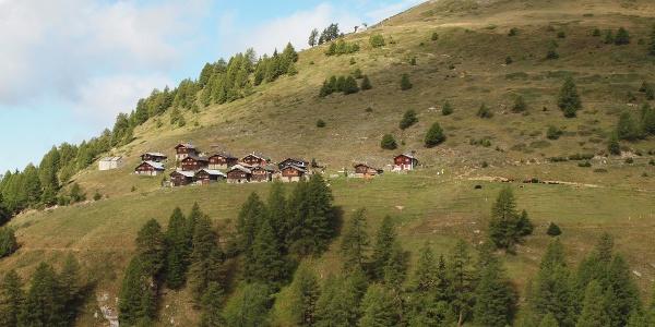 Alpe Stafel, Rosswald