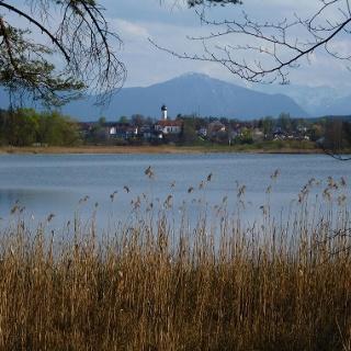 Vom Nordufer des Fohnsees bietet sich ein herrlicher Blick auf Iffeldorf.