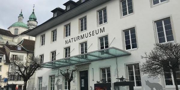 Naturmuseum Solothurn.