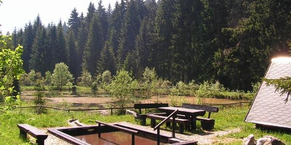 Kneippanlage bei Wildenthal (Ortsteil von Eibenstock)