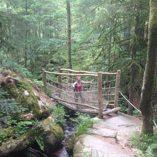 Brücke über den Gertelbach