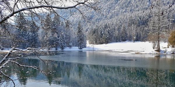 Böcklweiher im Winter
