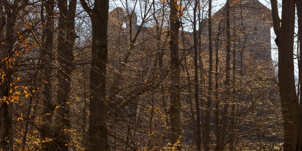 A somoskői vár sziluettje átsejlik a fák között