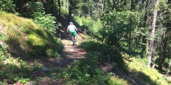 Trail zwischen Malix und Passugg