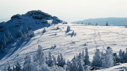 Gipfelaussicht zum Bodenmaiser Riegel