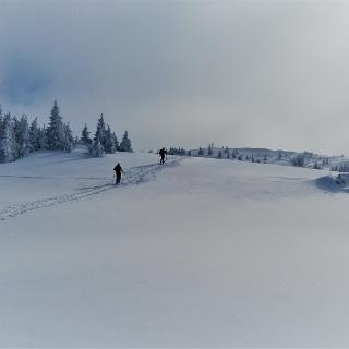 Tonion Gipfelhang