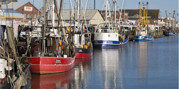 Alter Fischereihafen Cuxhaven