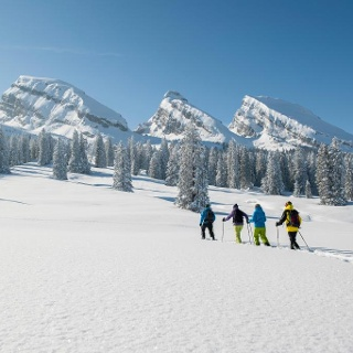 Schneeschuhwandern im Skigebiet Toggenburg