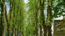 Loxstedter Sagenweg 1
