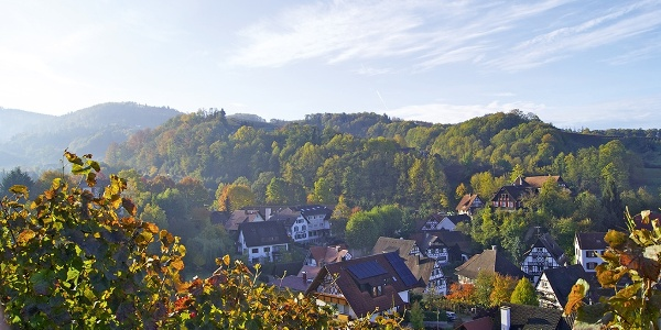 Ausblick auf Sasbachwalden