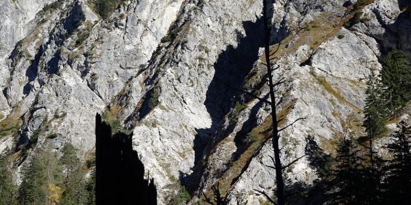 UNESCO-Weltnaturerbe seit Juli 2017: Der Lechnergraben vermittelt den spektakulären Zugang ins Wildnisgebiet Dürrenstein
