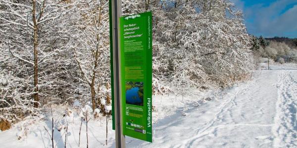 Das Naturschutzgebiet Jungferweiher im Winter