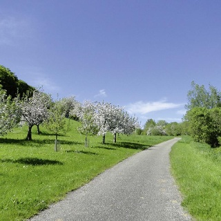 Radweg bei Haslach