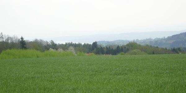 Blick auf Aach-Linz