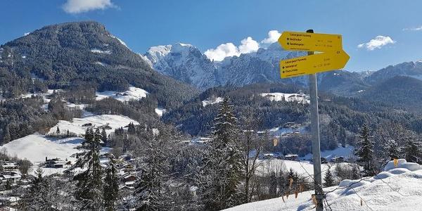 Sulzbergkopf Rundweg