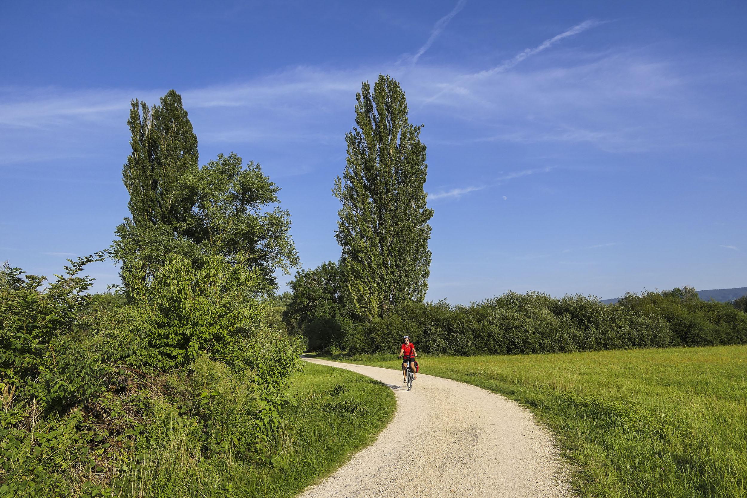 Radweg zwischen Gundholzen und Horn