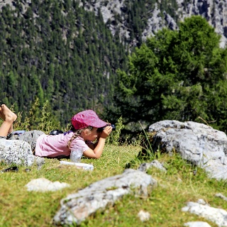 Tiere beobachten auf der Alp Grimmels.