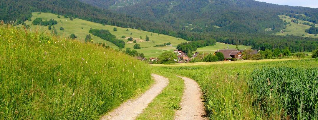 Feldweg zwischen Schubhus und Büel