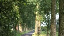 Route 54 Niederrhein: Kranenburg - Gennep - Kleve - Kranenburg