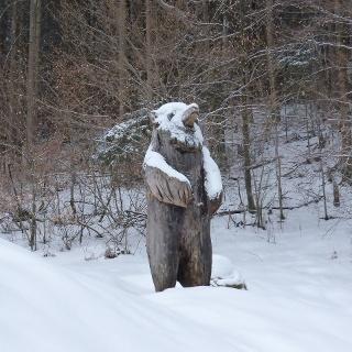 Bär von Hammersbach