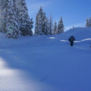 Aufstieg vom Torryboden nach Flühkäsenberg