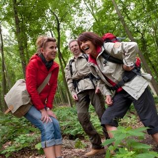 Wandergruppe im Wald
