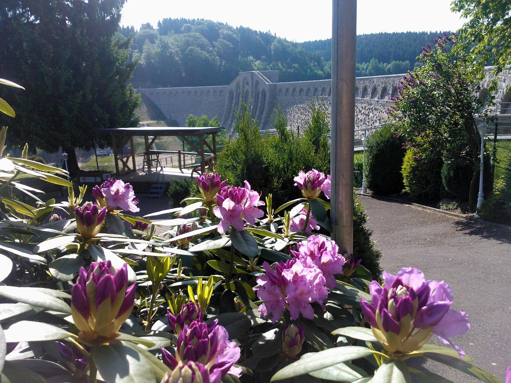 Talsperre Klingenberg im Sommer