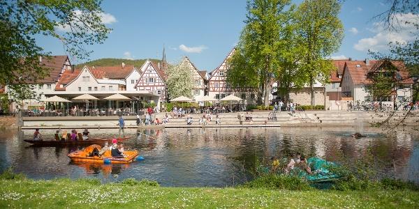 Der Stadtpark Kleb im Sommer mit Tretbooten auf der Nagold