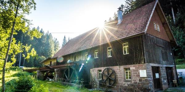 Die Kohlsägmühle befindet sich am Eingang ins Zinsbachtal