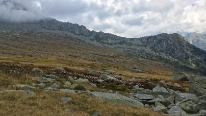 Passo Brescia von Süden