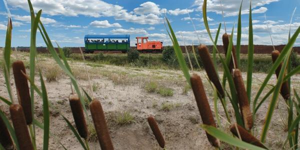"Moorbahn ""Seelter Foonkieker"" in Ramsloh"