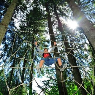 Netz im Kinderwald