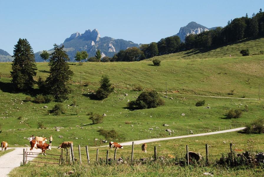 Wandern von Frasdorf aus - Auf die Frasdorfer Hütte