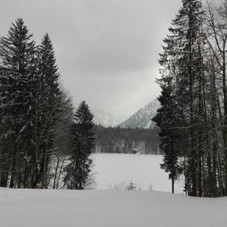 Verschneiter Freibergsee