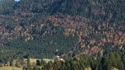 Blick zur Alpe Hohenschwand am Prodel