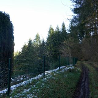 Der Friedhof von Speyerbrunn