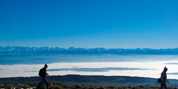 Zur Alpensicht auf den Chasseral.