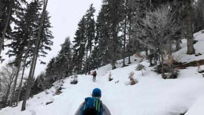 Aufstieg durch den Wald auf ca. 1000m Höhe