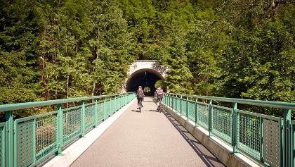 Flußradtouren im Erzgebirge - Tunneleinfahrt am Mulderadweg
