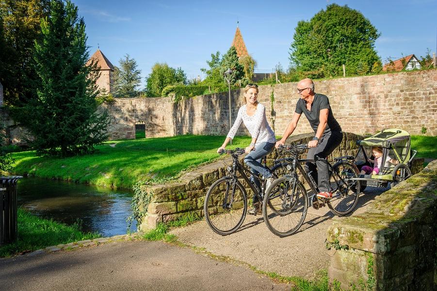 """Dt.-frz. Radtour für Familien """"Bienwald und Lauter"""""""