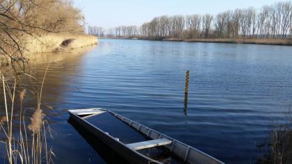 Idyll am Silbersee