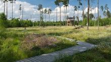 Naturlehrpfad im Pöllwitzer Wald